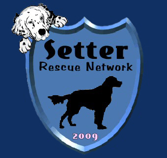 Read about our Setter Rescue Network